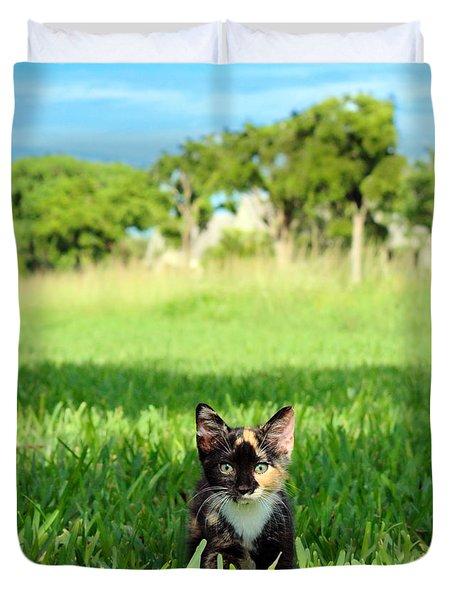 Duvet Cover featuring the photograph Kitten by Carsten Reisinger