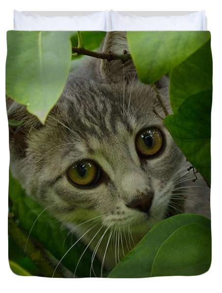 Kitten In The Bushes Duvet Cover by Scott Lyons