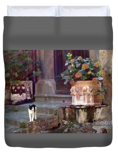 Kitten Italiano Duvet Cover by Barbie Corbett-Newmin