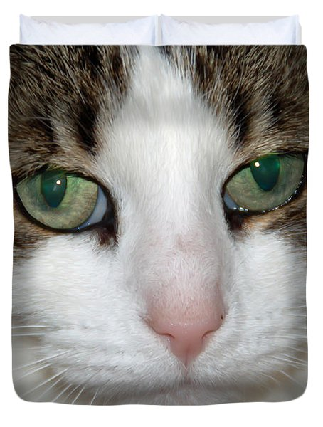 Duvet Cover featuring the photograph Kitty by Aimee L Maher Photography and Art Visit ALMGallerydotcom
