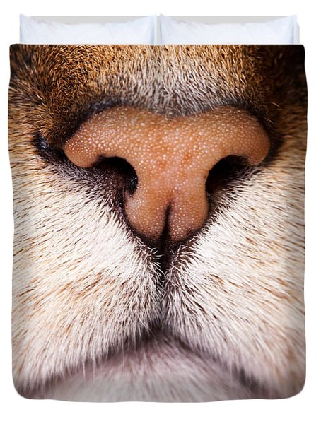 Kitty Nose  Duvet Cover by Sharon Dominick