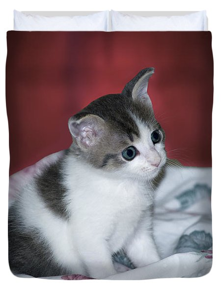 Kitty Taking A Moment To Chill Duvet Cover by Thomas Woolworth