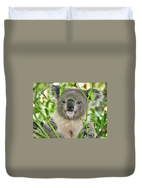 Koala Bear Duvet Cover
