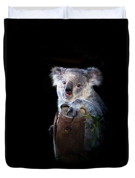 Koala Bear Duvet Cover