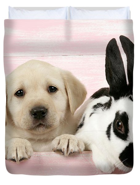 Lab Puppy And Bunny Duvet Cover by John Daniels
