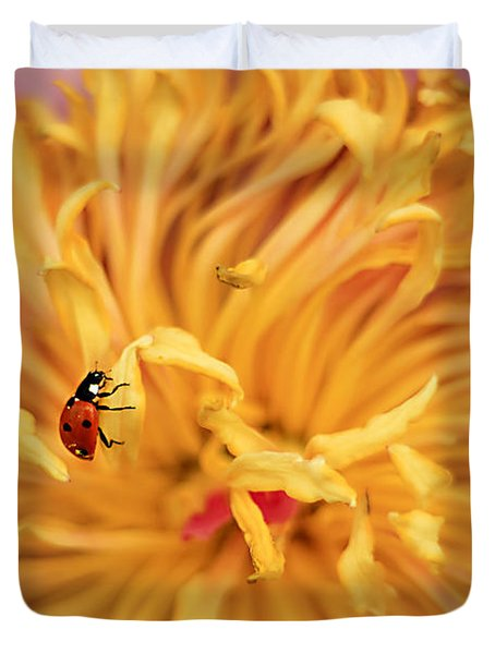 Lady Bug Duvet Cover by Darren Fisher