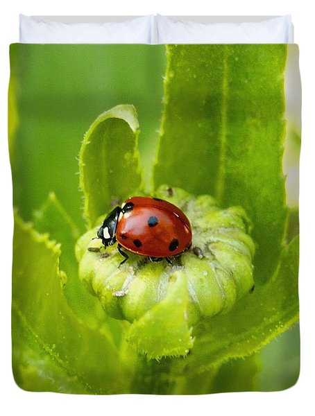 Lady Bug In The Garden Duvet Cover