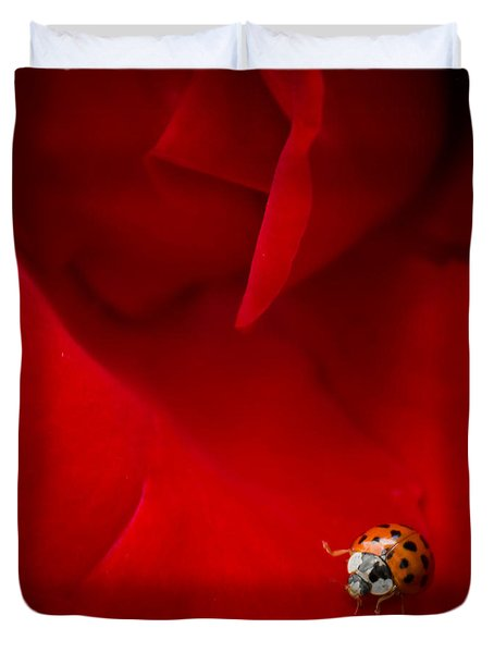 Ladybird In Rose Duvet Cover