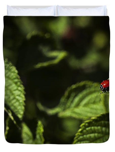 Ladybug Duvet Cover by Bradley R Youngberg