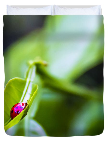 Ladybug Cup Duvet Cover by Marvin Spates