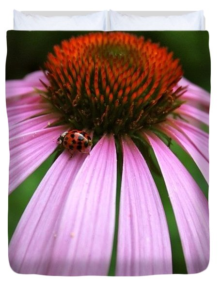 Ladybug On A Coneflower Duvet Cover