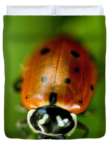 Ladybug On Green Duvet Cover by Iris Richardson