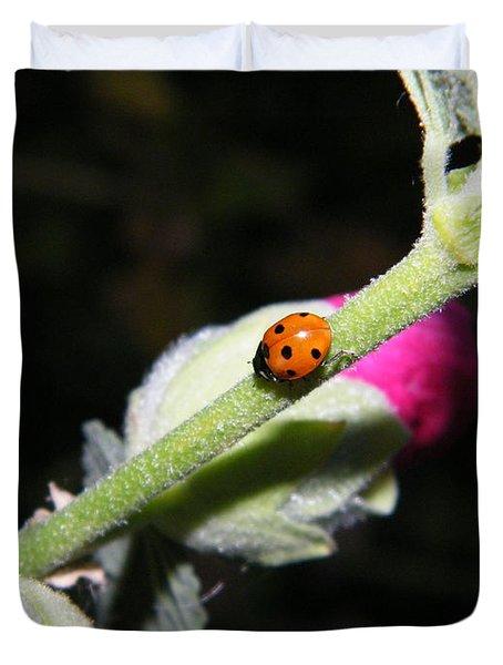 Ladybug Taking An Evening Stroll Duvet Cover