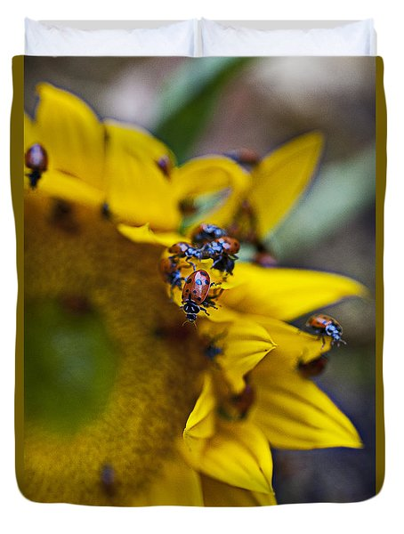 Ladybugs Close Up Duvet Cover by Garry Gay