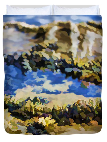 Laguna Beach Tide Pool Pattern 3 Duvet Cover by Scott Campbell