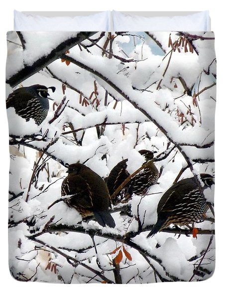 Lake Country Quail Duvet Cover by Will Borden