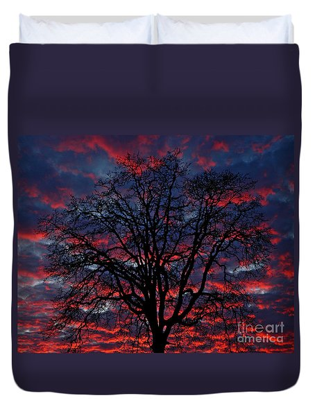 Lake Oswego Sunset Duvet Cover by Nick  Boren