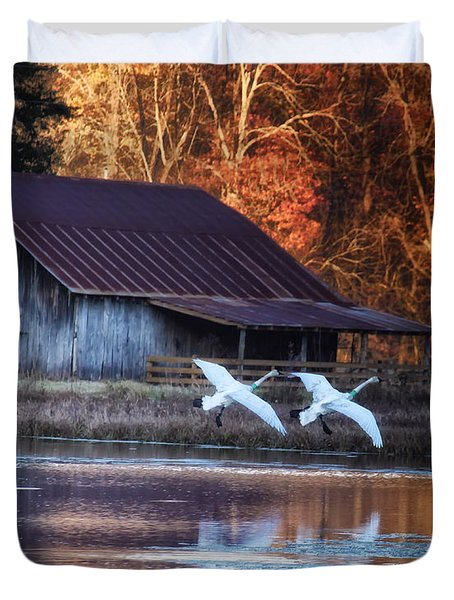 Landing Trumpeter Swans Boxley Mill Pond Duvet Cover by Michael Dougherty
