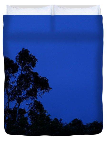 Blue Landscape Duvet Cover by Mark Blauhoefer