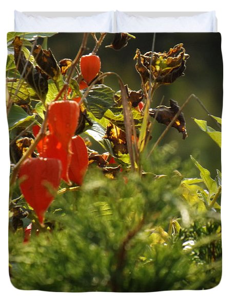 Duvet Cover featuring the photograph Lantern Plant by Brenda Brown