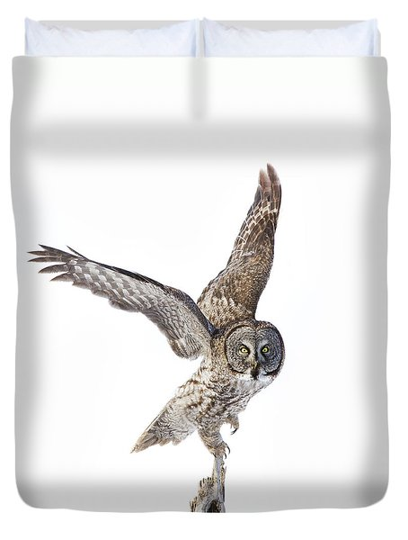 Lapland Owl On White Duvet Cover by Mircea Costina Photography