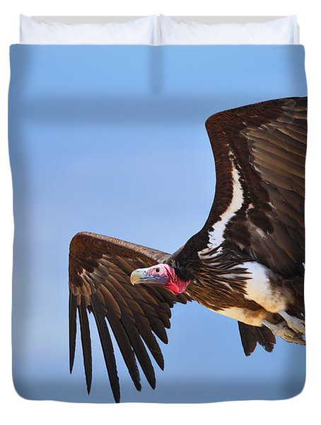Lappetfaced Vulture Duvet Cover