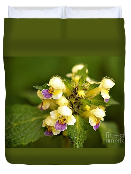 Duvet Cover featuring the photograph Large Flowered Hemp-nettle by Liz  Alderdice