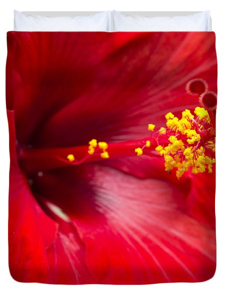 Large Red Hibiscus Duvet Cover