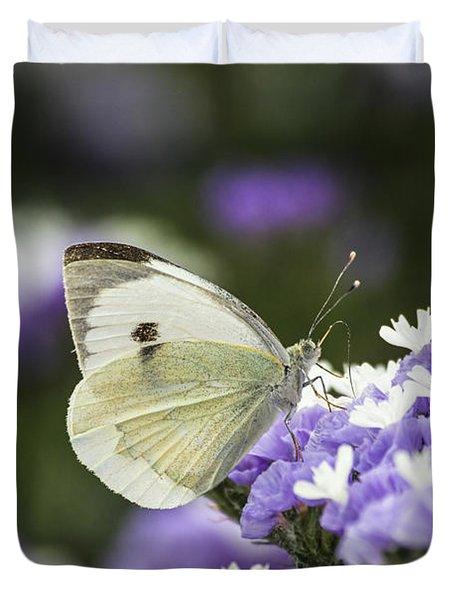 Large White Pieris Brassicae  Duvet Cover by Eyal Bartov