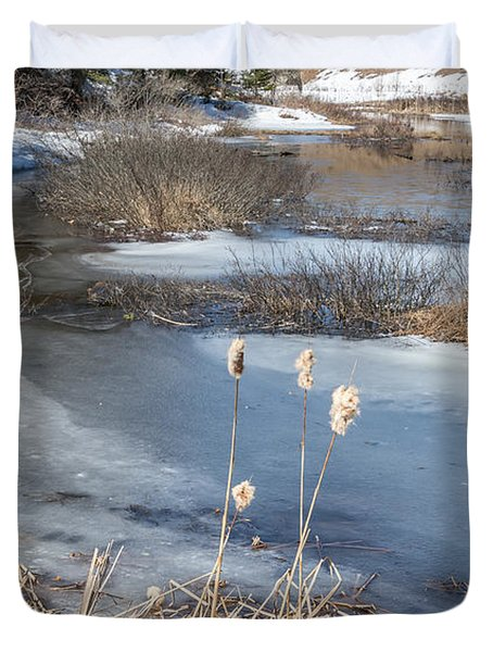 Last Days Of Winter Duvet Cover by Jola Martysz