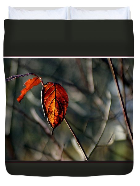 Last Light Through Alder Leaves Duvet Cover