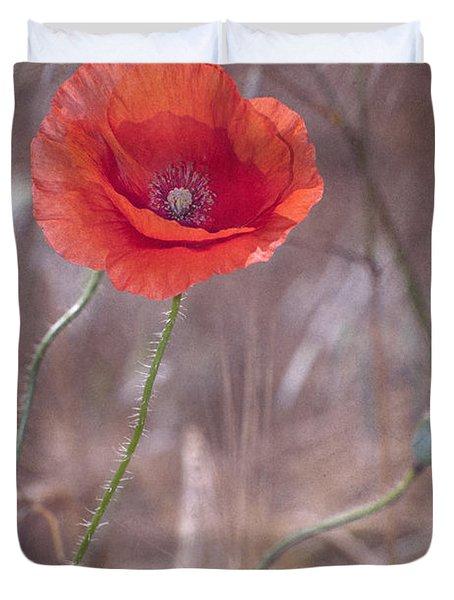 Last Poppy Duvet Cover by Guido Montanes Castillo