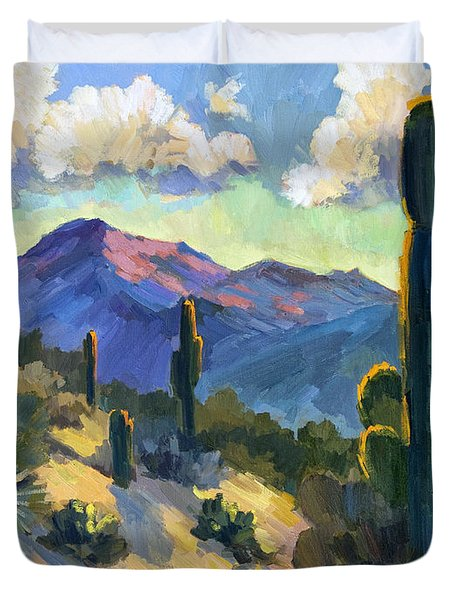 Late Afternoon Tucson Duvet Cover by Diane McClary