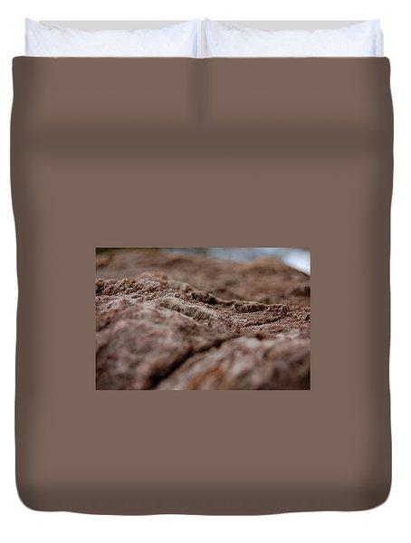 Lava Rock Landscape II Duvet Cover