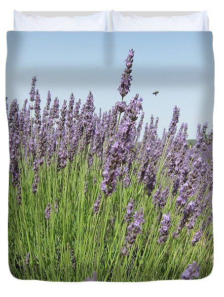 Lavender And The Bee Duvet Cover by Pema Hou