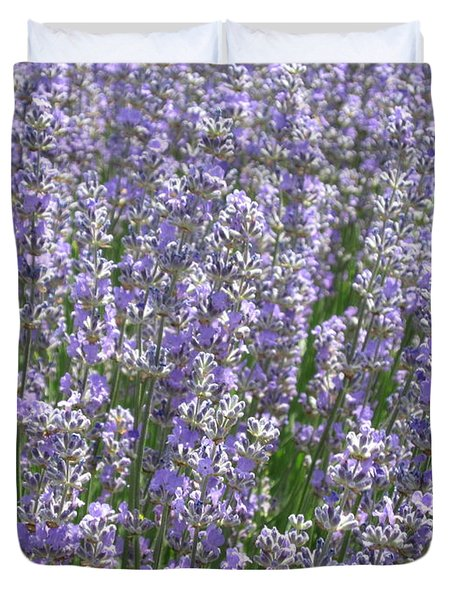 Duvet Cover featuring the photograph Lavender Hues by Pema Hou