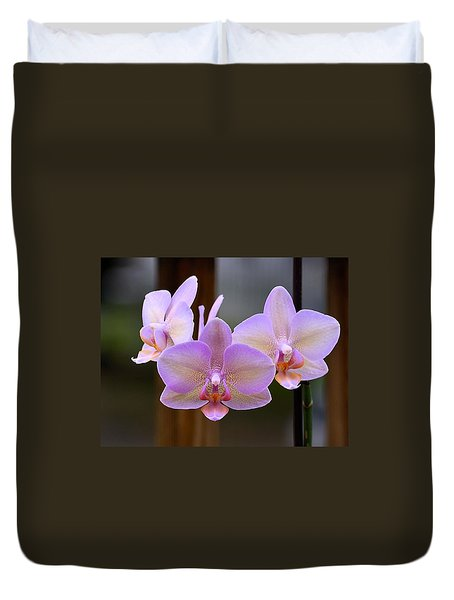 Lavender Orchid Duvet Cover by Kathy Eickenberg
