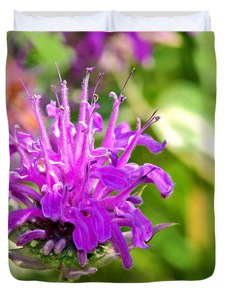 Lavender Pink Bee Balm Wild Bergamot Duvet Cover by Karon Melillo DeVega