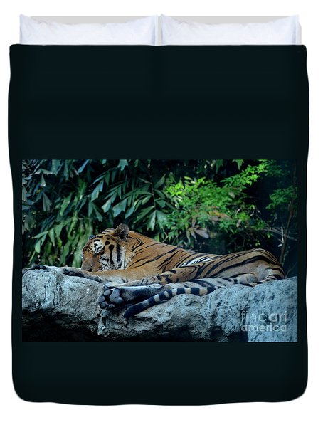 Duvet Cover featuring the photograph Lazy Cat by Michelle Meenawong