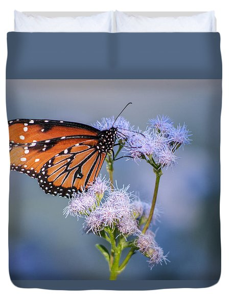 8x10 Metal - Queen Butterfly Duvet Cover by Tam Ryan