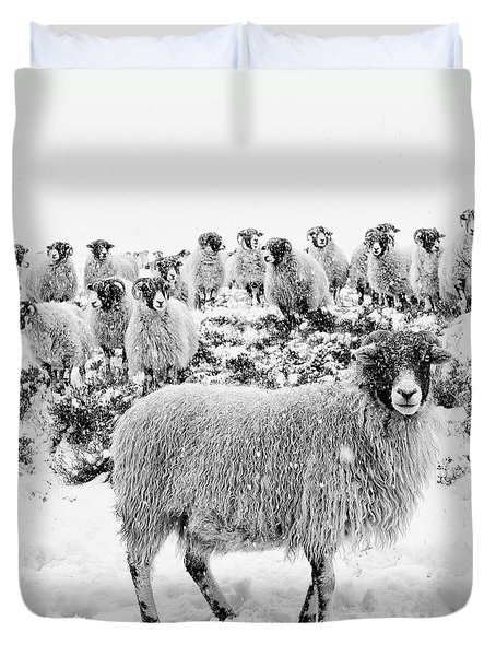 Leader Of The Flock Duvet Cover