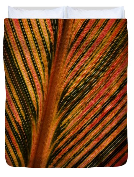 Cannas Plant Leaf Closeup Duvet Cover