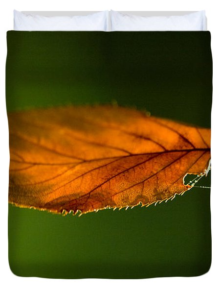 Leaf On Spiderwebstring Duvet Cover