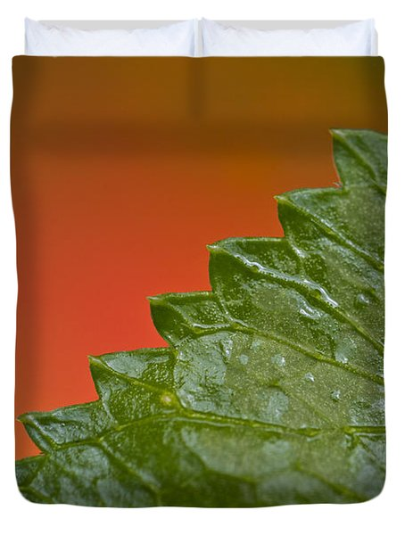 Leafy Duvet Cover by Heiko Koehrer-Wagner