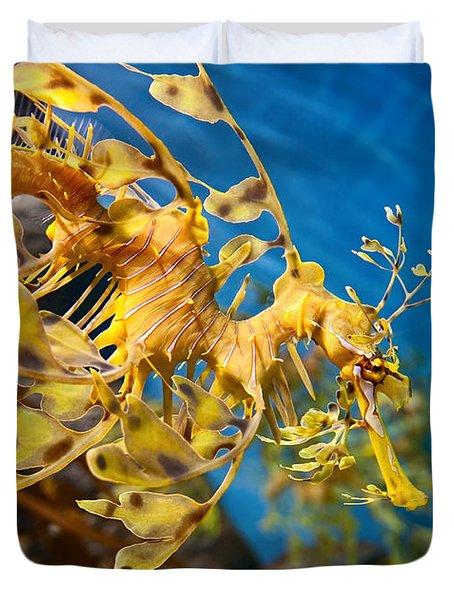 Leafy Sea Dragon Phycodurus Eques. Duvet Cover by Jamie Pham