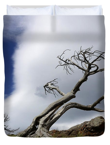 Leaning Just A Little Duvet Cover by Bob Christopher