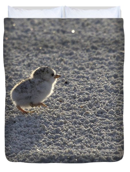 Least Tern Chick Duvet Cover