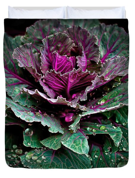Decorative Cabbage After Rain Photograph Duvet Cover