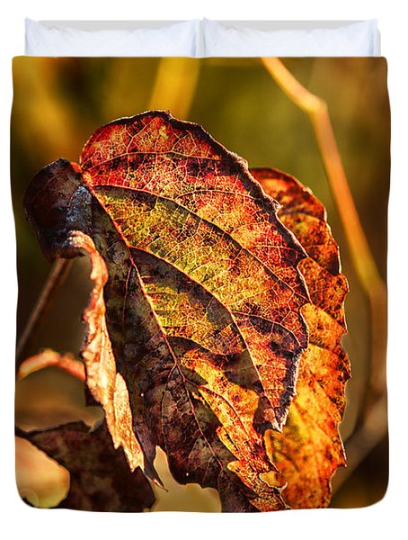 Leaving Autumn Duvet Cover