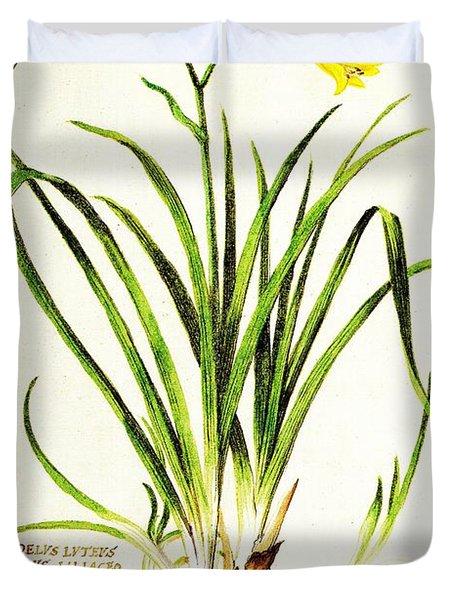 Lemon Daylily Botanical Duvet Cover